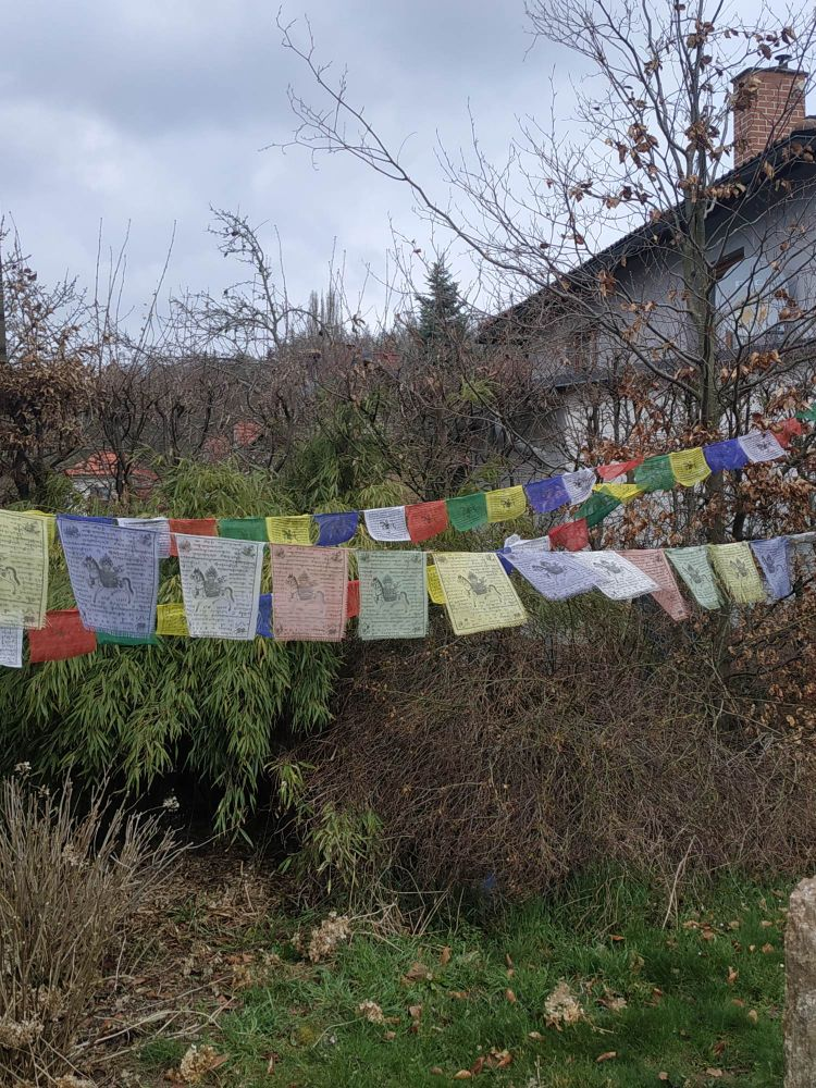 Buddisticky modlící se vlajky/Praying Flags středni/middle 25cm