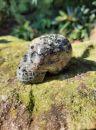 Lebka/Skull/Schädel Nuummite s Granat 6cm