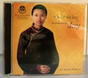 Discount Ani Wangmo - Immeasurable Joy